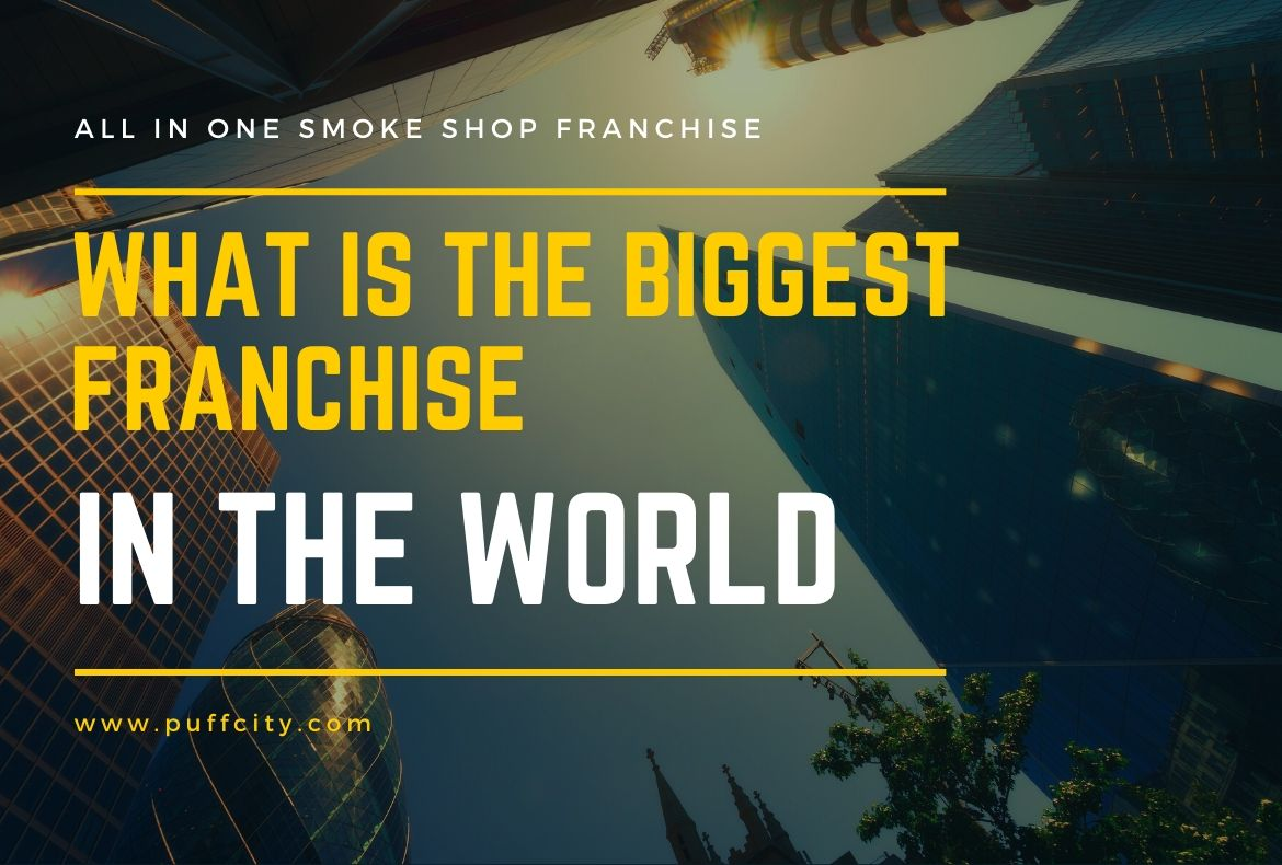 What is the Biggest Franchise in the World-2